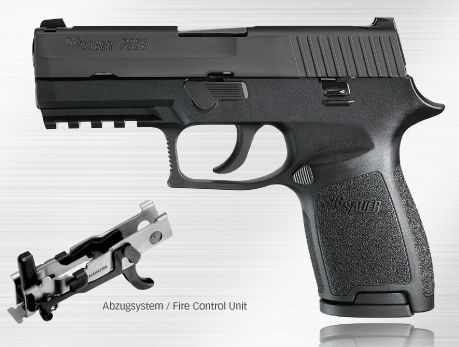 WF-SPORTS  SIG SAUER P250 ,Compact
