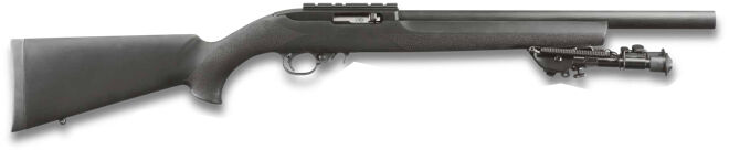 Ruger 10/22 Tactical Bull