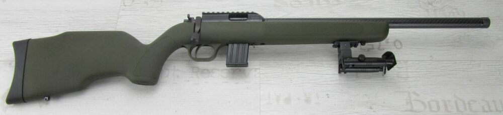 German Sport Guns / Diana R-22 Carbon